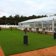 10m x 24m Clear Mornington Springs - Howitt Wedding (6).JPG